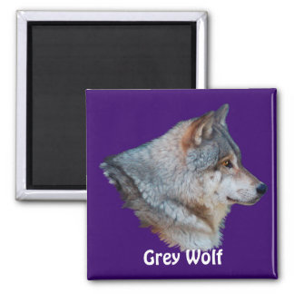 GREY WOLF Wildlife Magnet Collection
