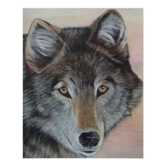 Grey wolf wildlife painting portrait realist art poster