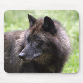 Grey Wolf Wildlife-supporter Animal Photography Mouse Pad