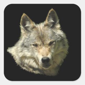 Grey Wolf Wildlife Supporter Artwork Square Sticker