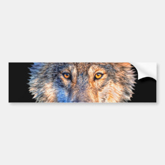 Grey wolf - wolf face bumper sticker