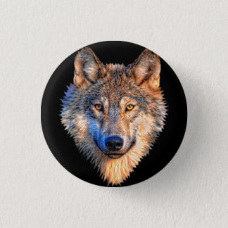 Grey wolf - wolf face button