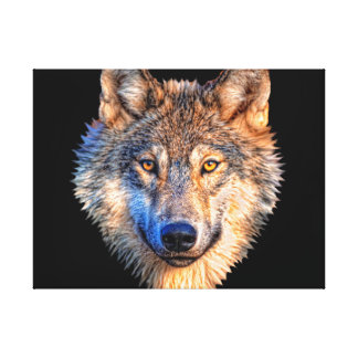 Grey wolf - wolf face canvas print