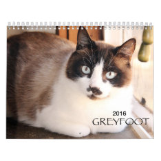 Greyfoot Cat Rescue 2016 Calendar at Zazzle
