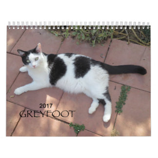 Greyfoot Cat Rescue 2017 Calendar