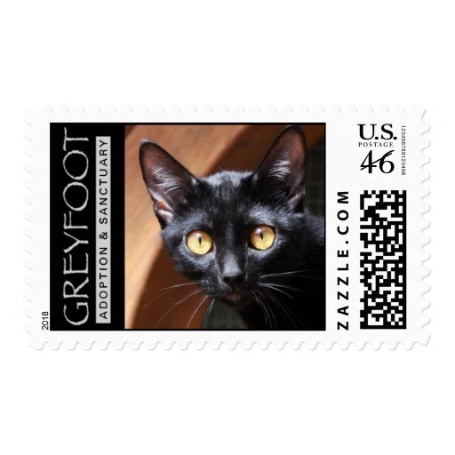 Greyfoot Cat Rescue Bombay Cat Stamp