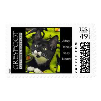 Greyfoot Cat Rescue Bowtie Adopt Rescue Stamp