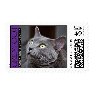 Greyfoot Cat Rescue Russian Blue Stamp