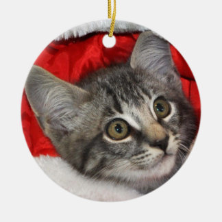 Greyfoot Cat Rescue Silver Grey Tabby Ornament