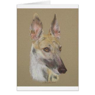 Greyhound 2 card