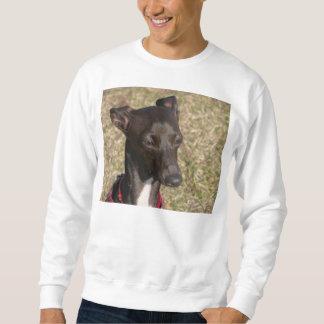greyhound-3.png sudadera