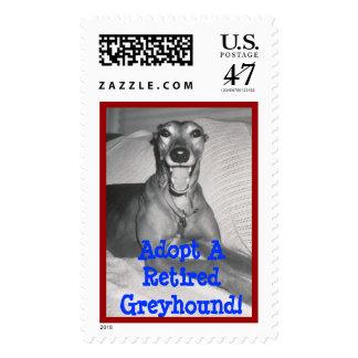 Greyhound Adoption Awareness Stamp