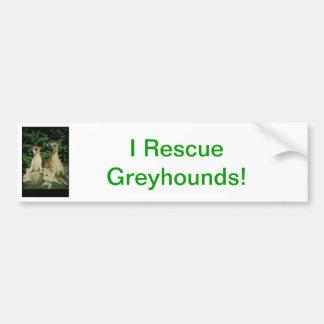 Greyhound and Puppies Bumper Sticker
