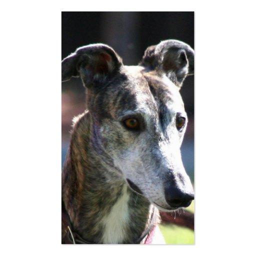 Greyhound business cards