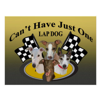 Greyhound Can't Have Just One lapdog Poster