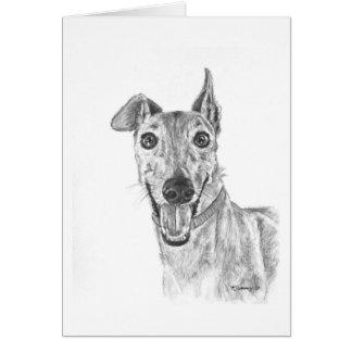 Greyhound Closeup Drawing Card