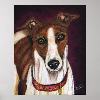 Greyhound Dog Art - Royalty Poster