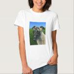 Greyhound Dog Art - Teddy T-Shirt
