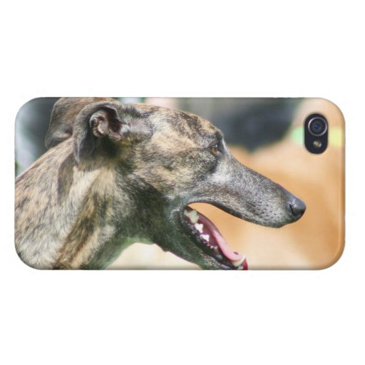 Greyhound dog case for iPhone 4