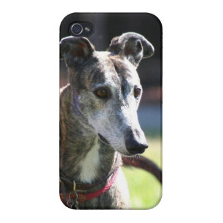 Greyhound dog cover for iPhone 4