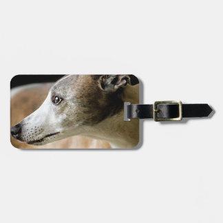 Greyhound Dog Luggage Tag