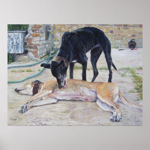 greyhound dog portrait realist animal art poster