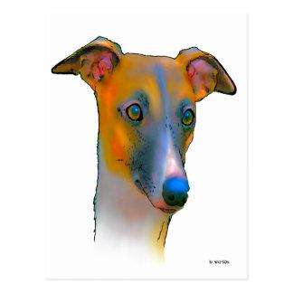 Greyhound  dog postcard