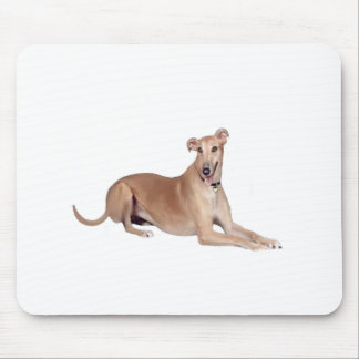 Greyhound (fawn, lying down) mouse pad