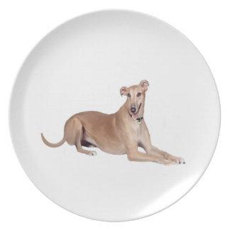 Greyhound (fawn, lying down) dinner plate
