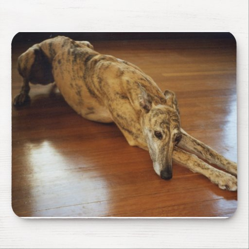 Greyhound Floor Work Mouse Pad