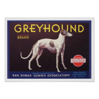 Greyhound Fruit Crate Label Poster