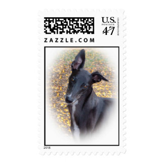 Greyhound Head Postage