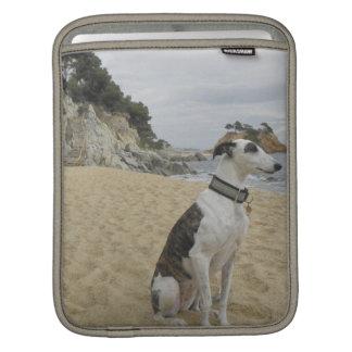 Greyhound iPad Sleeve