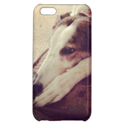 Case Savvy Matte Finish iPhone 5C Case with Greyhound Phone Cases design