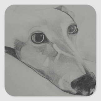 greyhound.jpg pegatina cuadrada