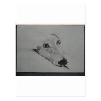 greyhound.jpg postal