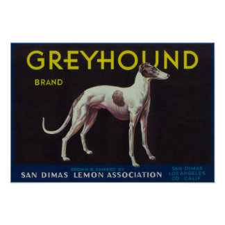 Greyhound Lemon LabelSan Dimas, CA Poster