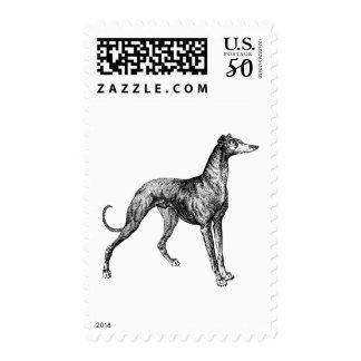 greyhound merchandise postage