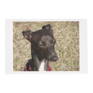 greyhound.png italiano tapete individual