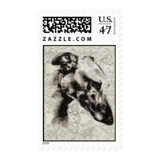 Greyhound Portrait On Vintage Floral Postage