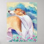 Greyhound Posters Prints