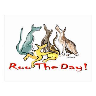 greyhound roo postcard