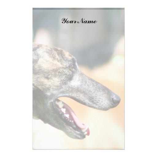Greyhound stationary stationery