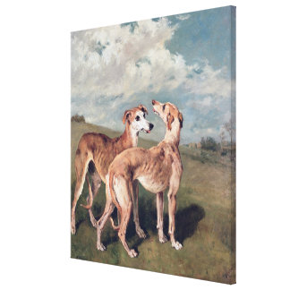 Greyhounds Canvas Print