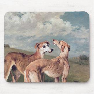 Greyhounds Mouse Pad