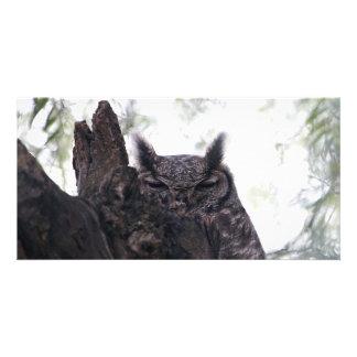 Greyish Eagle Owl Card