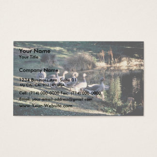 Greylag Geese Business Card