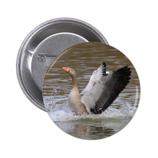 Greylag Geese Button