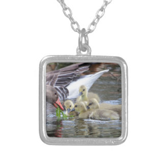 Greylag geese feeding goslings silver plated necklace