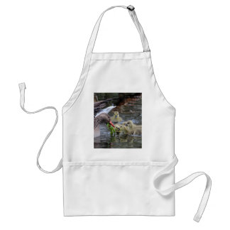 Greylag geese feeding goslings with plants on a la adult apron